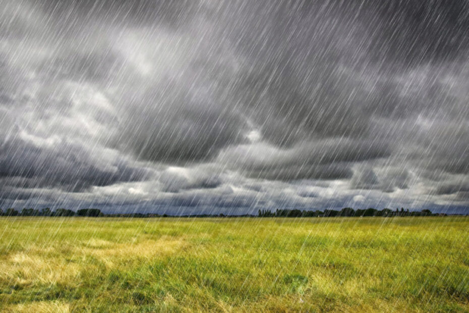 Makaveli Bet - Rain Heavy Rain over a prairie in Brittany France Photo cred Adobe stock 45729797 E